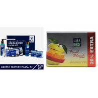Combo of Nutriglow Derma Repair Kit 550gm + Astabe...