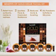 Nutriglow gold kesar facial kit 260 gm